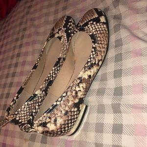 Snake skin shoes with gold heel